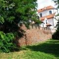 Klasztor OO. Jezuitów mury i drzewa